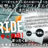 PRIDE(プライド)アフィリエイトの19ヶ月目のアクセスと収益