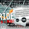 PRIDE(プライド)アフィリエイトの15ヶ月目のアクセスと収益